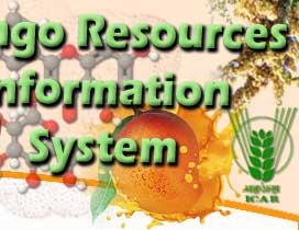 Mango Stem Borer Classification Essay - image 9